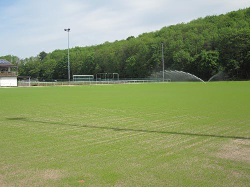 Sportplatz Gondelsheim 4