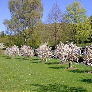 Friedhofserweiterung Oberweier, Ettlingen
